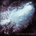 IN MALICE'S WAKE - Light Upon The Wicked CD